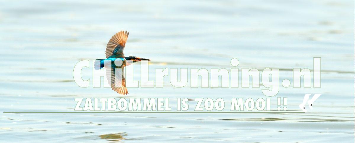 ChiLLrunning, ZALTBOMMEL_is_zo_mooi!, hardlopen_in_Zaltbommel